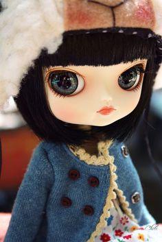 ●~~~~     winter dal      ~~~~●