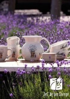 Lavender:  #Lavender field and crockery.