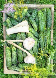 Ogorki Kiszone Recipe In 2020 Asparagus Vegetables Food
