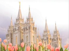 The Church of Jesus Christ of Latter-day Saints (LDS, Mormon). Lds Temple Pictures, Lds Pictures, Church Pictures, Mormon Temples, Lds Temples, Salt Lake City, Salt Lake Temple, Lds Art, Lds Mormon