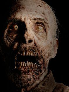 The Walking Dead:🕷Wrath Arte Horror, Gothic Horror, Horror Art, Horror Movies, Walking Dead Zombies, Fear The Walking Dead, Zombie Art, Zombie Makeup, Halloween Makeup