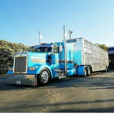 Semitrckn : Photo Kenworth custom W900L bull hauler  Great job. Short message to my favorite ship company. You should car with us. Premium Exotic Auto Enclosed Transport. We are coast to coast and local. Give us a call. 1-877-eHauler or click LGMSports.com