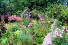 German rose garden