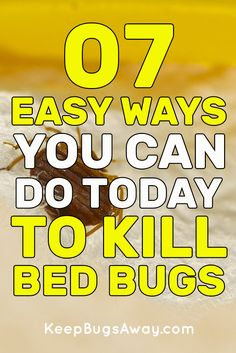 Keep Bugs Away - Best Ways to Control Your Pest Problem Bed Bug Control, Pest Control, Bed Bug Remedies, Keep Bugs Away, Bed Bug Bites, Bed Bugs, Spring Cleaning, Candle Making, Cleaning Tips