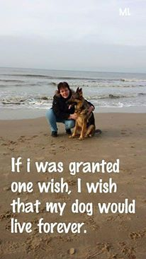 That is so true I wish that can happen in life I really do wish that I remember my dog he die to