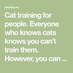 Cat training for people. Everyone who knows cats knows you can't train them. However, you can learn to be a better cat owner.