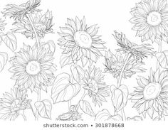 Simple Flower Drawing, Sunflower Drawing, Sunflower Tattoos, White Flower Png, Line Drawing Images, Sunflower Illustration, Sunflower Leaves, Colored Pencil Techniques, Leaf Drawing