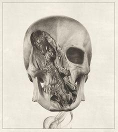 Buamai - Where Inspiration Starts studio, skulls, album covers, artists, drawings, illustrations, sam green, blog, design