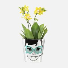 Give your succulents, herbs or flowers a bit more personality with these flower power plant pots. Available styles: Elegant Audrey; Audrey Hepburn, Flower Power, Design3000, Cactus, Creative Labs, Teenage Girl Gifts, Water Conservation, Big Flowers, Potted Plants