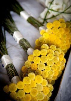 yellow wedding flower bouquet, BILLY BALLS