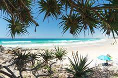 SUNSHINE BEACH ☀️ via My Ocean Bliss www.tinystyle.com.au #noosa #visitnoosa #sunshinebeach #tinystyle Beau Hudson, Rock You Baby, Australian Beach, Beaches, Bliss, Beach House, Shells, Sunshine, Tropical