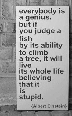 """""""Everybody is a  genius. But if you judge a  fish by its ability to climb  tree, it will live its whole life believing that it is stupid.""""-Albert Enstein"""