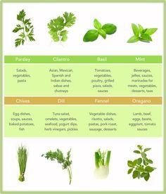 Herb chart
