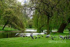 Regent's Park London, England