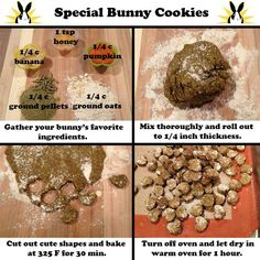 APPROVED: Baking time for bunny parents! You can replace the banana and/or pumpkin for your bunny's favorite veggie or fruit puree. If your bunny is watching his or her figure, omit the honey. Hamsters, Chinchillas, Rodents, Rabbit Toys, Pet Rabbit, Angora Rabbit, Cavy Cage, Homemade Rabbit Treats, Chinchilla Baby