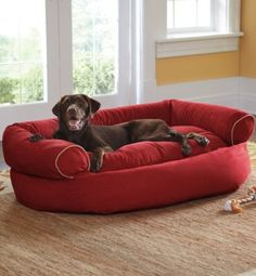 I so want three for our dogs! Double your pet's comfort with the tufted, orthopedic comfort of our easy-to-clean Sofa Dog Bed. Game Mode, Clean Sofa, Dog Sofa Bed, Pet Gate, Animal House, Pet Beds, Dog Houses, Diy Stuffed Animals, Large Dogs