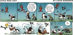 Little Dog Lost by Steve Boreman Sunday, September 2014 Funny Animal Comics, Funny Animals, September 28, Little Dogs, Losing Me, Sunday, Lost, Guys, Feelings