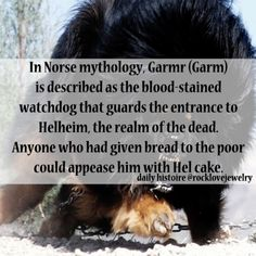 Viking Age Dog Mythology More @ rocklovejewelry Norse Goddess, Norse Pagan, Norse Mythology, Viking Facts, Viking Quotes, Nordic Vikings, Viking Life, Viking Woman, Viking Culture