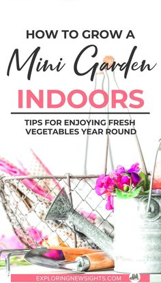 Every wonder how you can grow a mini garden inside your apartment or tiny home? Check out these tips and tricks to grow fresh herbs and vegetables indoors no matter the amount of space you have. Growing Vegetables From Seeds, Growing Herbs Indoors, Types Of Vegetables, Fresh Vegetables, Fresh Herbs, Small Space Gardening, Gardening Tips, Micro Farm, Growing Lettuce