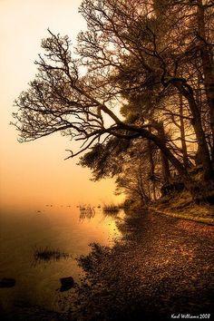 autumn glow by a lake