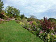 Sur le causse juste en dessous du sommet d'une colline de rocher calcaire aux limites des Départements de la Dordogne et du Lot. Le jardin de la Daille a été créé autour d'un ensemble de bâtiments de ferme datant du 1805. Le jardin a été ouvert à la visite depuis 1985 et il a été attribué le Label Jardin Remarquable depuis l'année 2007.