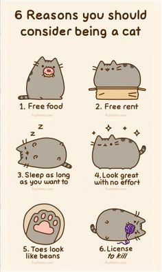 I love pusheen:)
