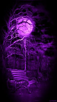 PURPLE MOONLIT NIGHT