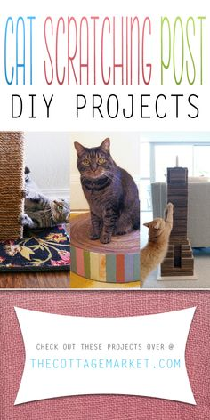 Cat Scratching Post DIY Projects - The Cottage Market