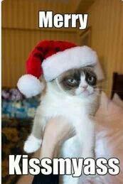 Same to you grumpy cat lol