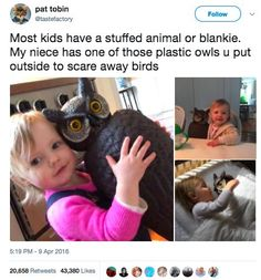 All of the fun of kids with none of the tantrums.