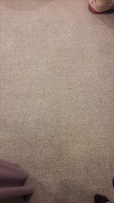18. Carpeted floor