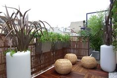 Tropical balcony by ConfidentLiving