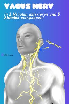 Fitness Workouts, Yoga Fitness, Fitness Motivation, Health Fitness, Massage, Vagus Nerve, Muscle Anatomy, Movie Covers, Aesthetic Movies
