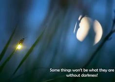 Without darkness, how would we appreciate the light?