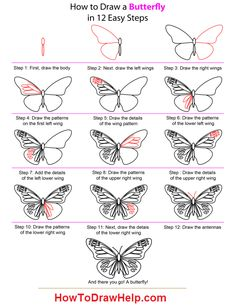 Easy to Draw Butterflies | Butterfly Drawing Easy Methods How To Draw Butterflies Step By Design ...