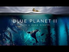 Blue Planet II, a prequel set to music by Hans Zimmer and Radiohead  | The Kid Should See This