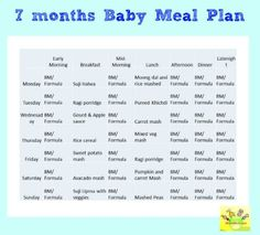 Top 10 yummy food ideas for your 7 months baby pinterest stage 7 month baby food chart meal plan for 7 months baby forumfinder Gallery