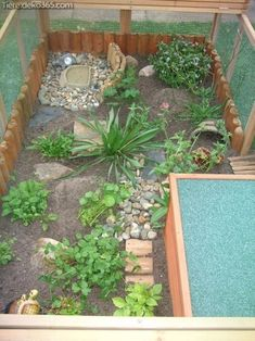 Great tortoise set up with roof and pen Terrarium Tortoise House, Tortoise Habitat, Tortoise Table, Baby Tortoise, Sulcata Tortoise, Turtle Care, Pet Turtle, Box Turtle Habitat, Outdoor Tortoise Enclosure