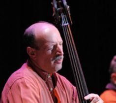 Bassist Bruce Gertz – Why Is Music Important (The Panel Experiment) by Brent-Anthony Johnson