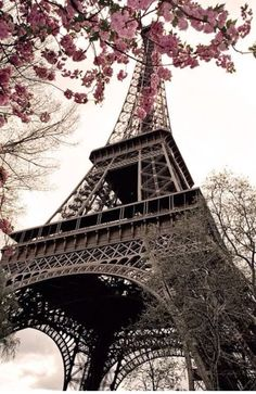 Book Hotels and Hostels in Paris, France with STA Travel. Explore top sightseeing options and tours in Paris. Or explore France with your Student France Rail Pass. Oh Paris, I Love Paris, Pink Paris, Paris Cafe, Paris 2015, Montmartre Paris, Oh The Places You'll Go, Places To Travel, Places To Visit