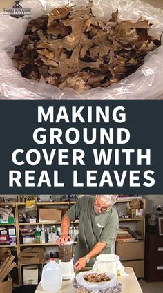 Learn how to use real dead leaves to create a realistic ground cover option for your model railroad scenery, featuring Lou Sassi. Ho Scale Train Layout, Ho Scale Trains, Model Train Layouts, Modeling Techniques, Modeling Tips, All The Small Things, Models, Model Building, Frappe