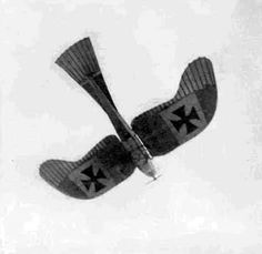 The German Taube, easily the most beautiful aircraft of the entire Great War. I mean, it has FEATHERS.