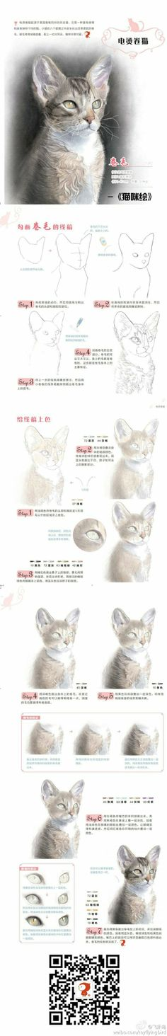 Watercolor step by step of a kitten.