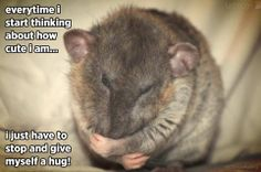 give yourself a big hug today, too!
