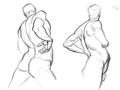 """The Artistic Anatomy Blog   """"Force: Dynamic Life Drawing for Animators"""" by Michael D. Mattesi"""