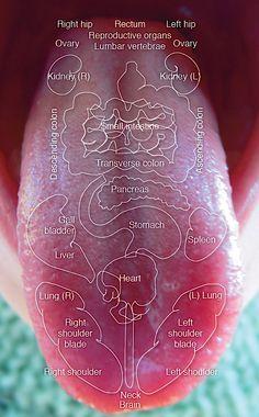 Carte de la langue