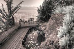 Esalen Institute mediation big sur california infrared by Jane Linders Great Photos, Cool Pictures, Big Sur California, Camera Test, Infrared Photography, Picture Day, Man Photo, Fine Art Photography, Fine Art America
