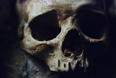 skull old death poison ancient anthropology departed deceased RIP dark eerie The Undertaker, Hawke Dragon Age, Yennefer Of Vengerberg, Black Sails, Pirate Life, Necromancer, Loki Laufeyson, Captain Hook, Pirates Of The Caribbean