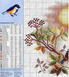 Birds & Flowers 1