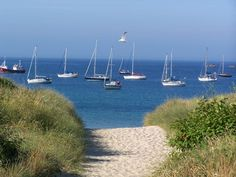 The Channel Island of Alderney has the perfect combination of wide sandy beaches and beautiful hidden coves to match all occasions. Channel Islands Uk, Guernsey Channel Islands, Sailing Day, Sailing Trips, Bailiwick Of Guernsey, William The Conqueror, White Horses, Beach Hotels, Sandy Beaches